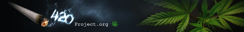 420project_banner